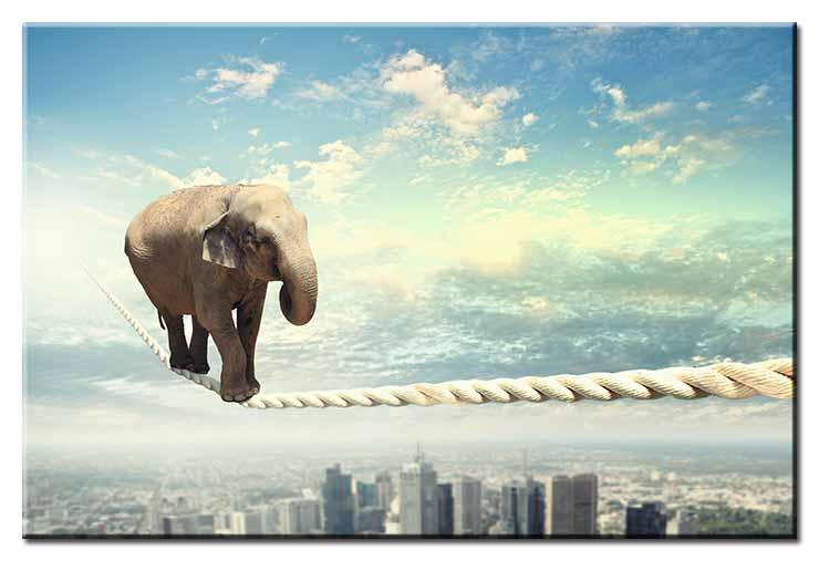 Modernes Leinwandbild - Tanz auf dem Seil - Elefant über der Stadt