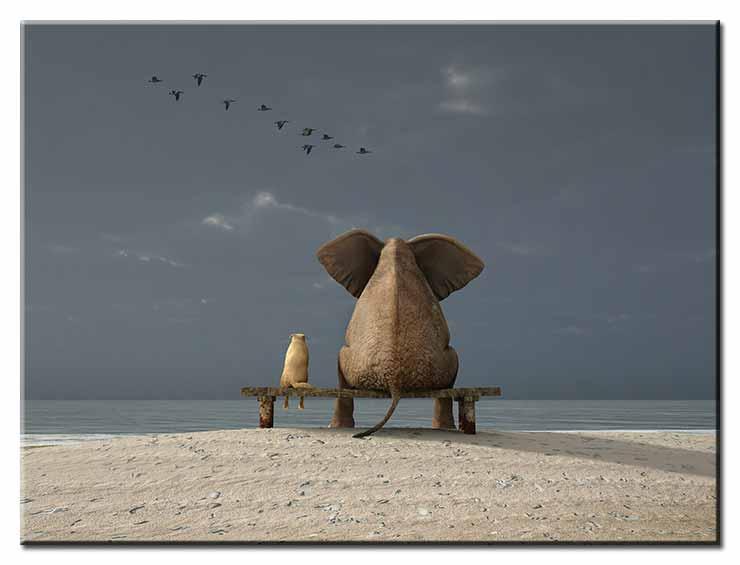 Modernes Leinwandbild - Beste Freunde - Elefant und Hund