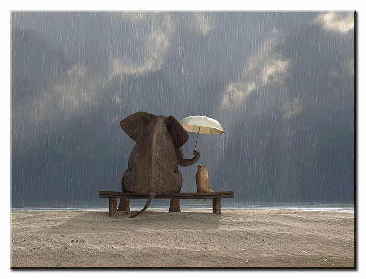 Modernes Leinwandbild - Beste Freunde - Zusammen durch Wind und Wetter