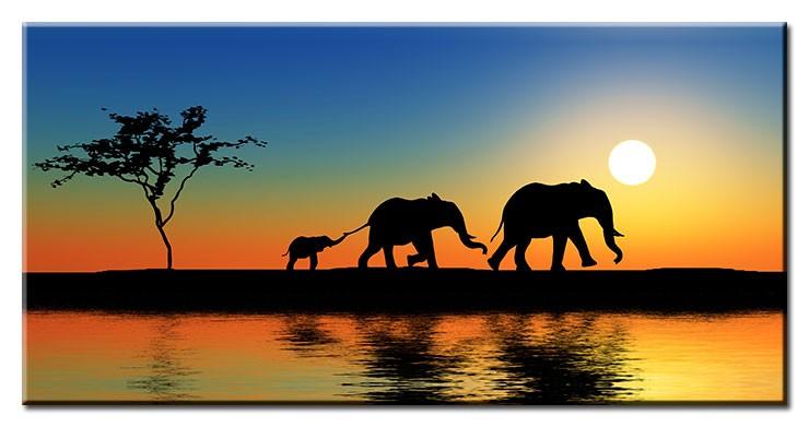 Modernes Leinwandbild - Elephant Walk