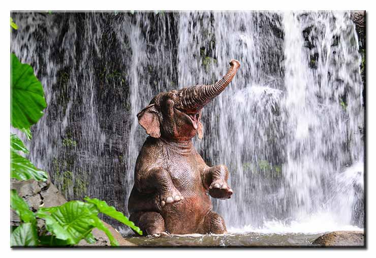 Modernes Leinwandbild - Badespass - Elefant vor Wasserfall